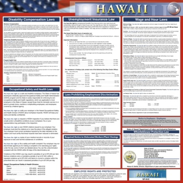 Hawaii State Poster